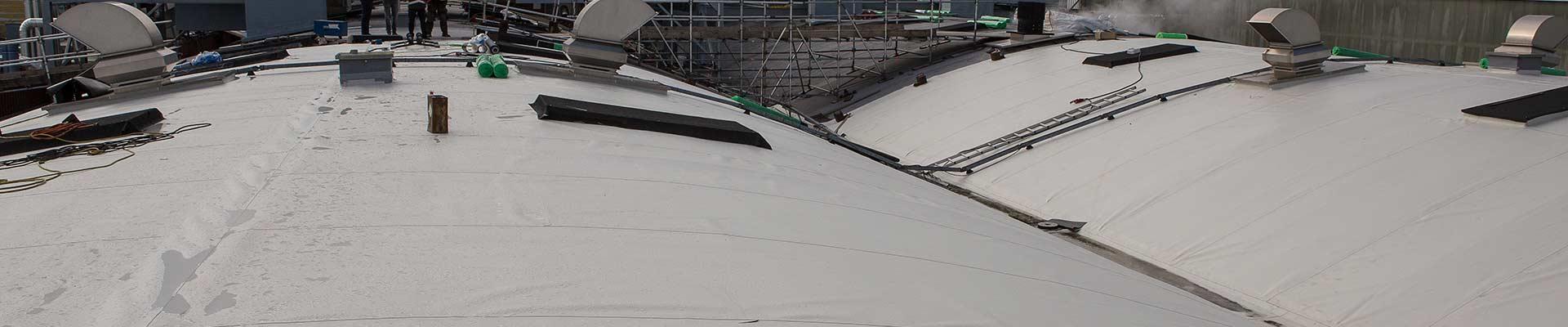 Flagon TPO gebogen dak